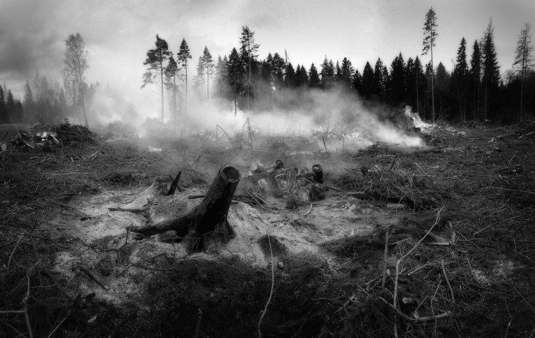 Klimaváltozás: Angliában már sokkal több az erdőtűz