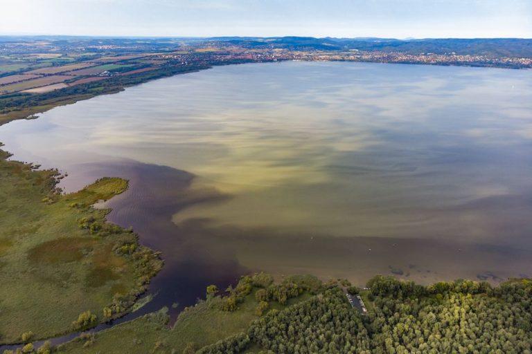 A rengeteg beruházás miatt óriási veszélybe került a Balaton élővilága