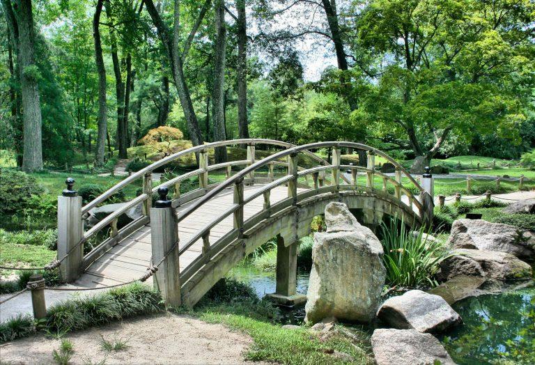 Durván zöldít Bécs, 1974 óta nem építettek ekkora parkot
