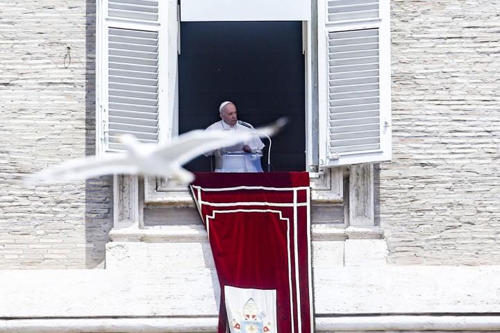Ferenc Pápa köszönetet mondott magyarországi látogatása kapcsán
