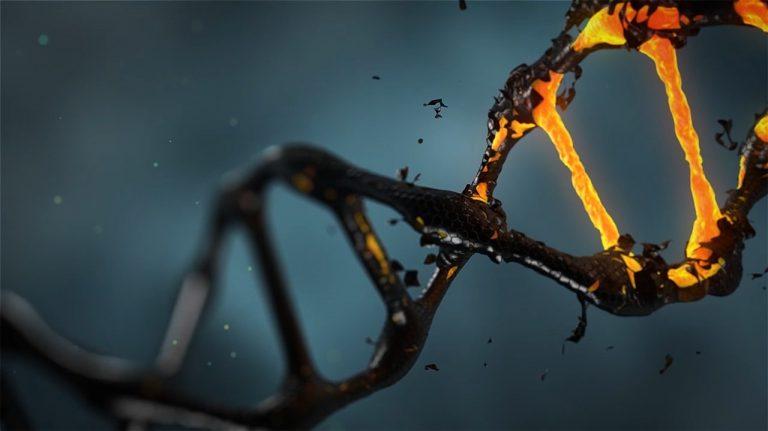 Az adattárolás új dimenziója: a DNS